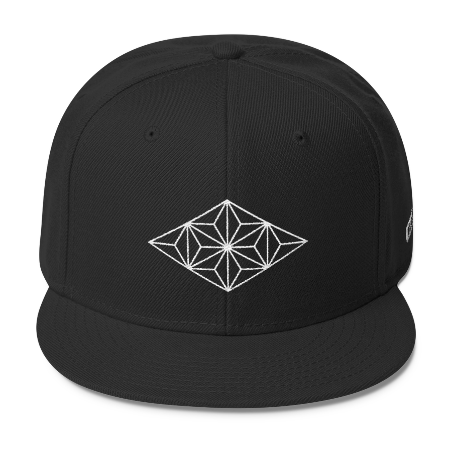 Image of Embroidered Snap Back V