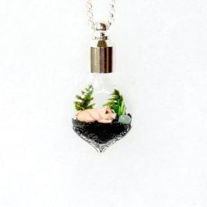 Image of Terrarium Jewelry - Custom Miniature Pig Necklace