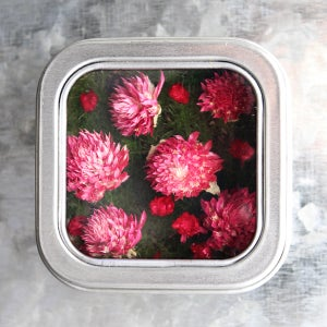 Image of Flower Magnet, Miniature Garden Fridge Magnet