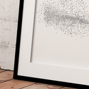 Image of Murmuration Flock
