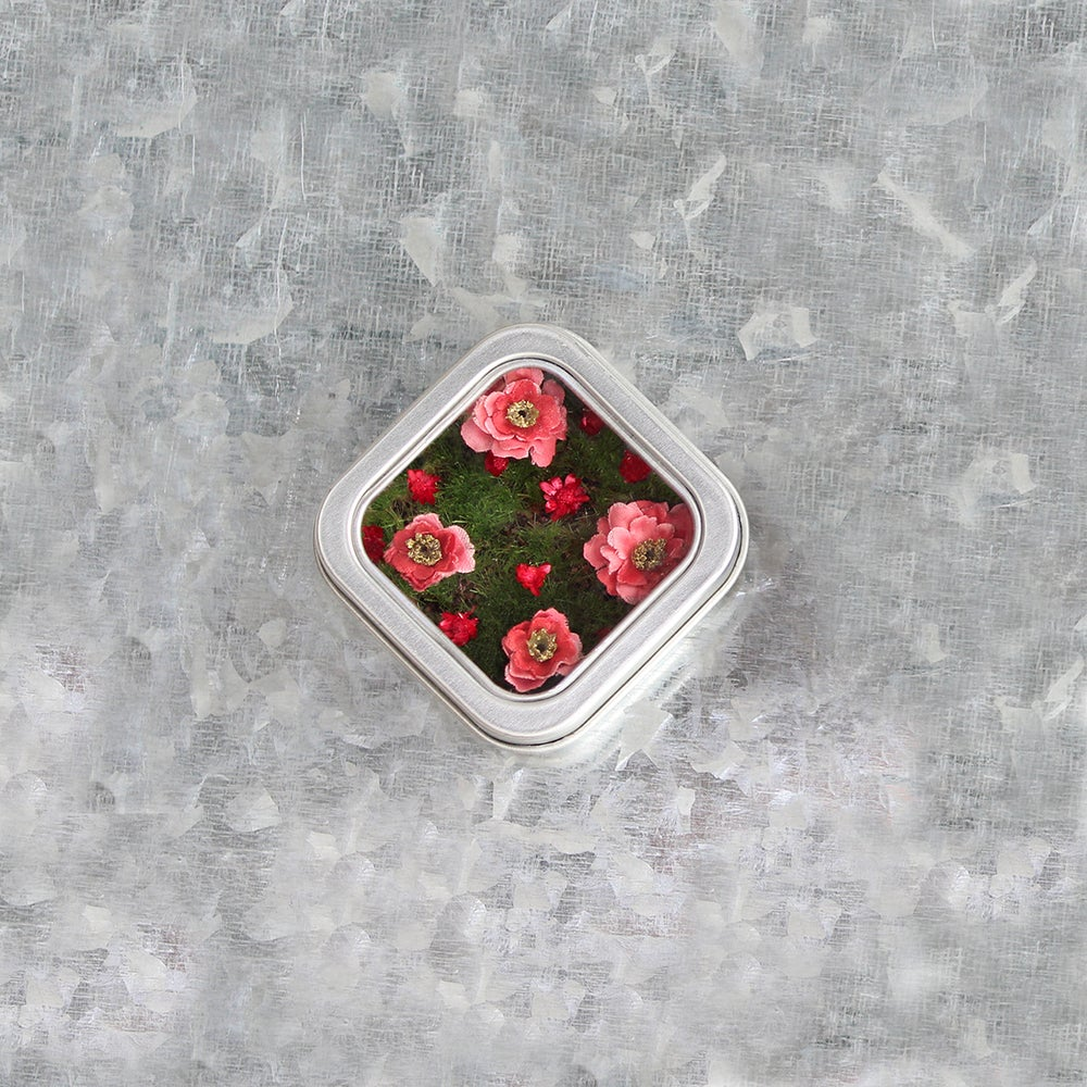 Image of Kitchen Flower Garden Fridge Magnet, Gift for the Gardener