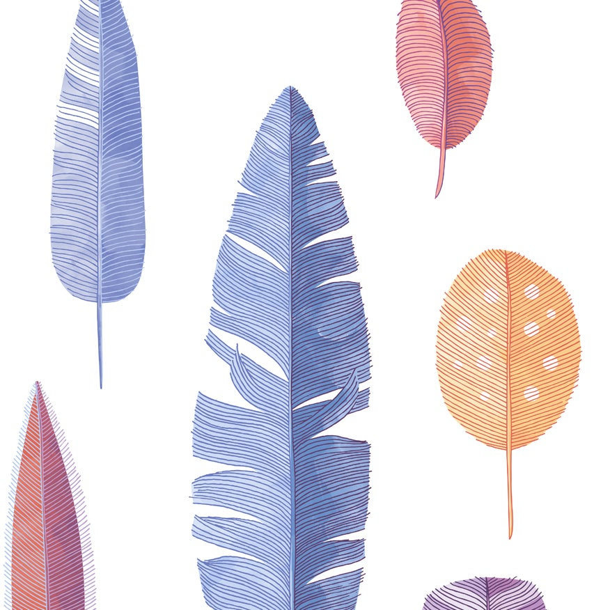 Image of Print: Coloured Feathers