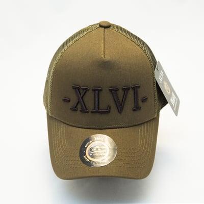 Image of Olive Mesh XLVI