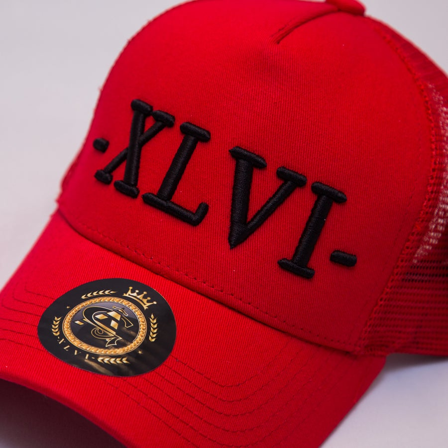 Image of Red Mesh XLVI