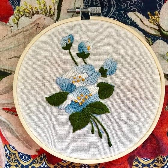 Image of Bluet