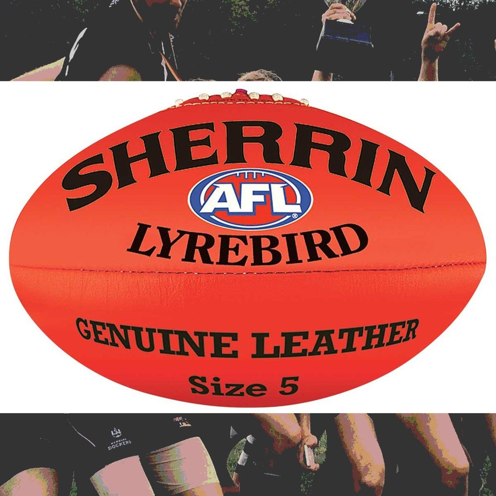 Image of Football Sherrin Lyrebird
