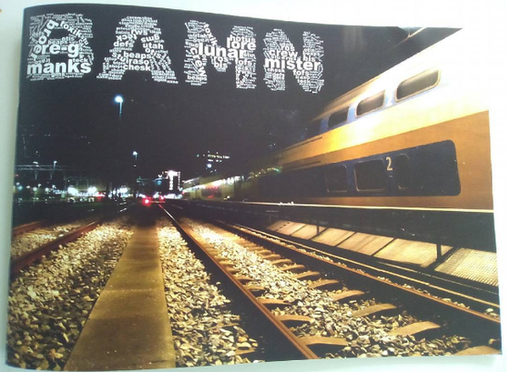 Image of REPRINTED BAMN #1