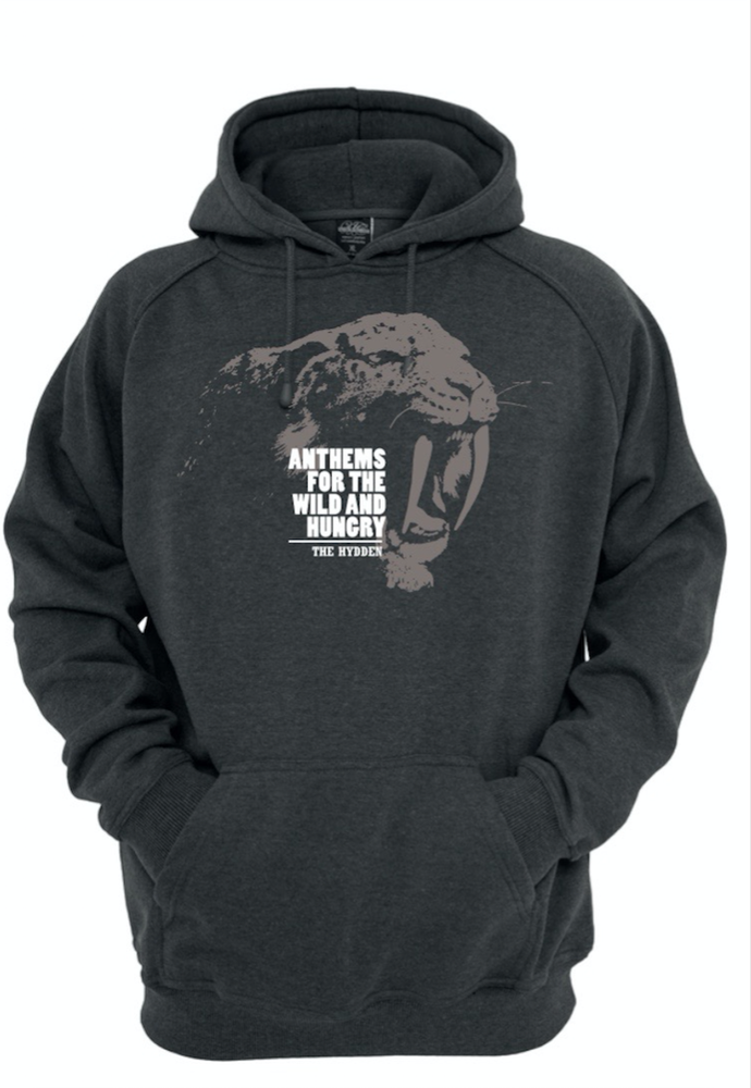 Image of The Hydden Hoody grey