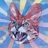 Wildcat II