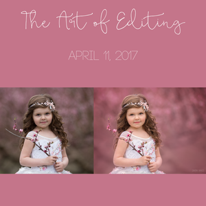 Image of The Art of Editing - April 11, 2017 Pre-Recorded Video Edit