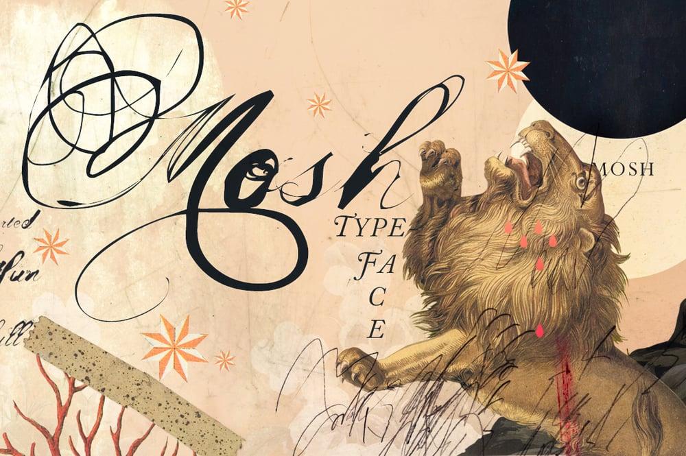 Image of Mosh