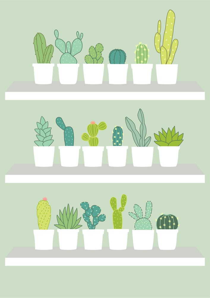 Image of Cacti Cacti Giclee Print