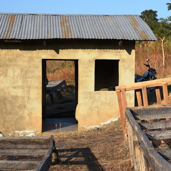 Image of Tanzania Mbeya Mwalyego