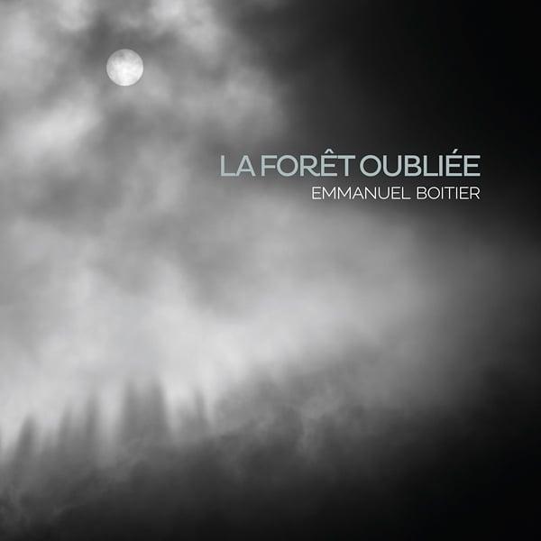 Image of La forêt oubliée