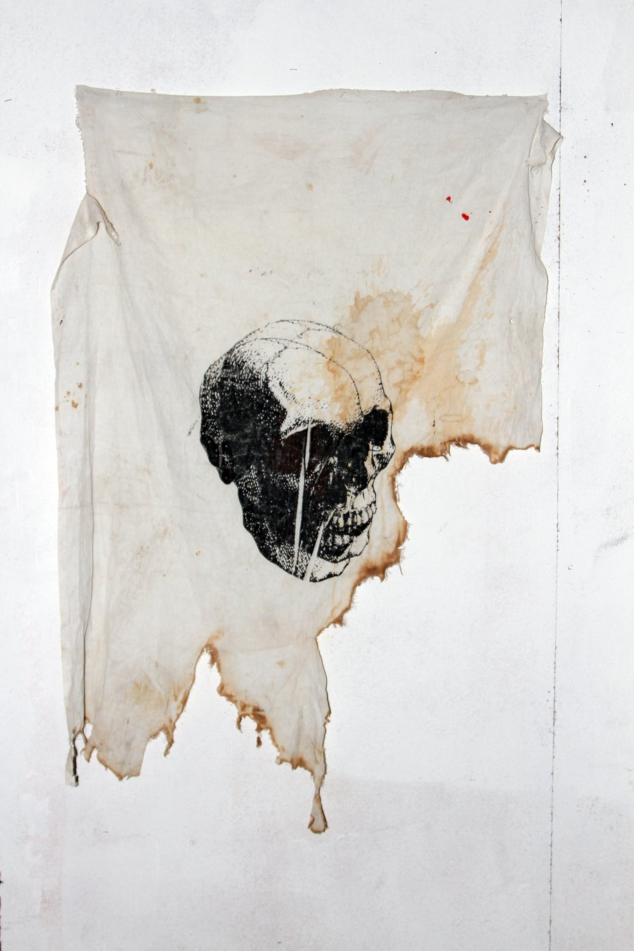 Image of BURNED FLAG WITH SKULL BY ION RAKHMATULINA