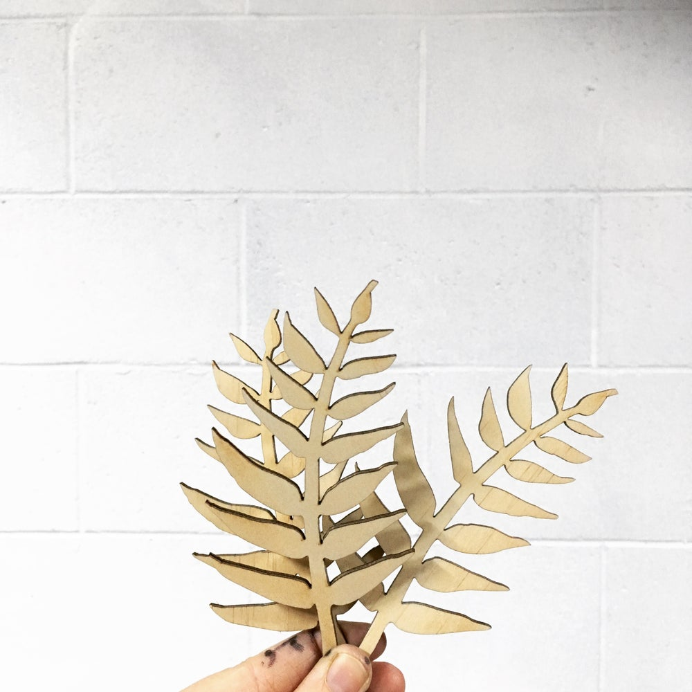 Image of MINI FERNS | Set of 3