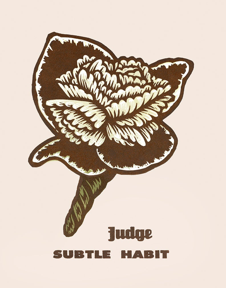 "Image of ""Judge"""