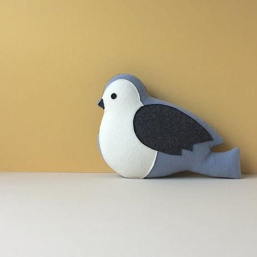 Image of the Bird
