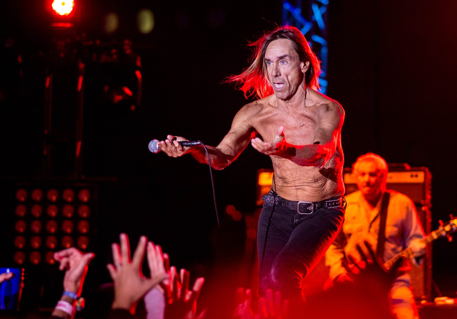 Image of Iggy and the Stooges limited edition photo