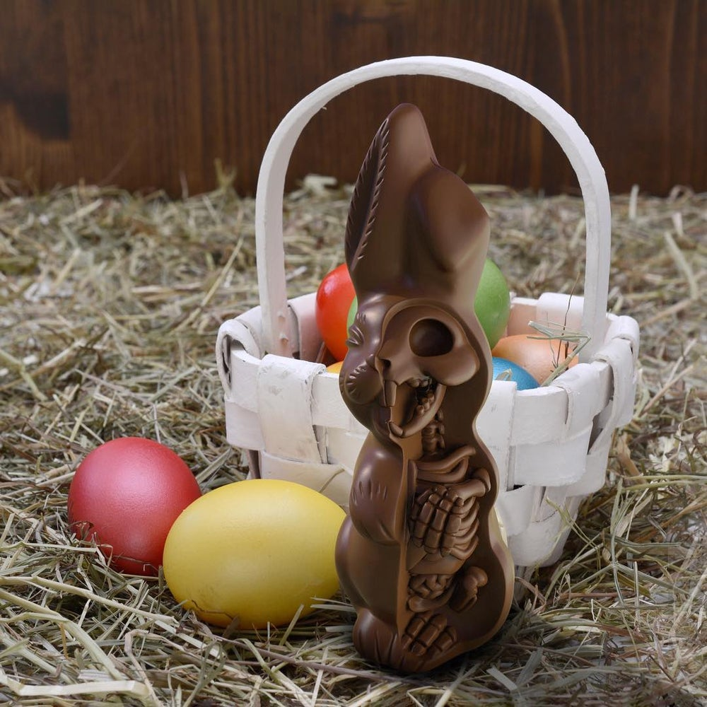 Image of Anatomical Chocolate Easter Bunny By Jason Freeny