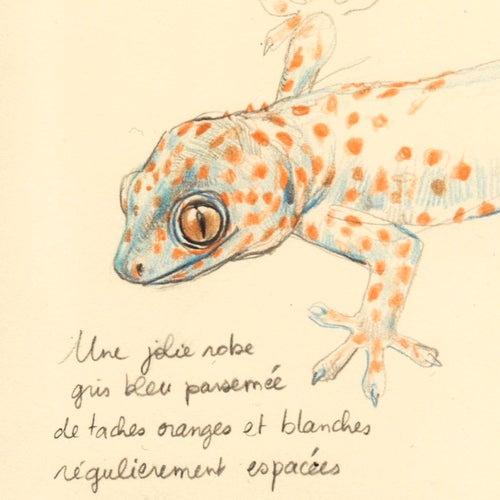 "Image of Original Painting - ""Les Geckos 1"" - 22x27 cm"