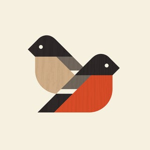 Image of Bullfinch Artprint (European Finches Series)
