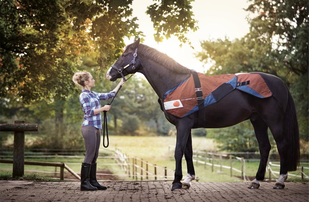 Image of Beth Gibbons Tom The Model Download