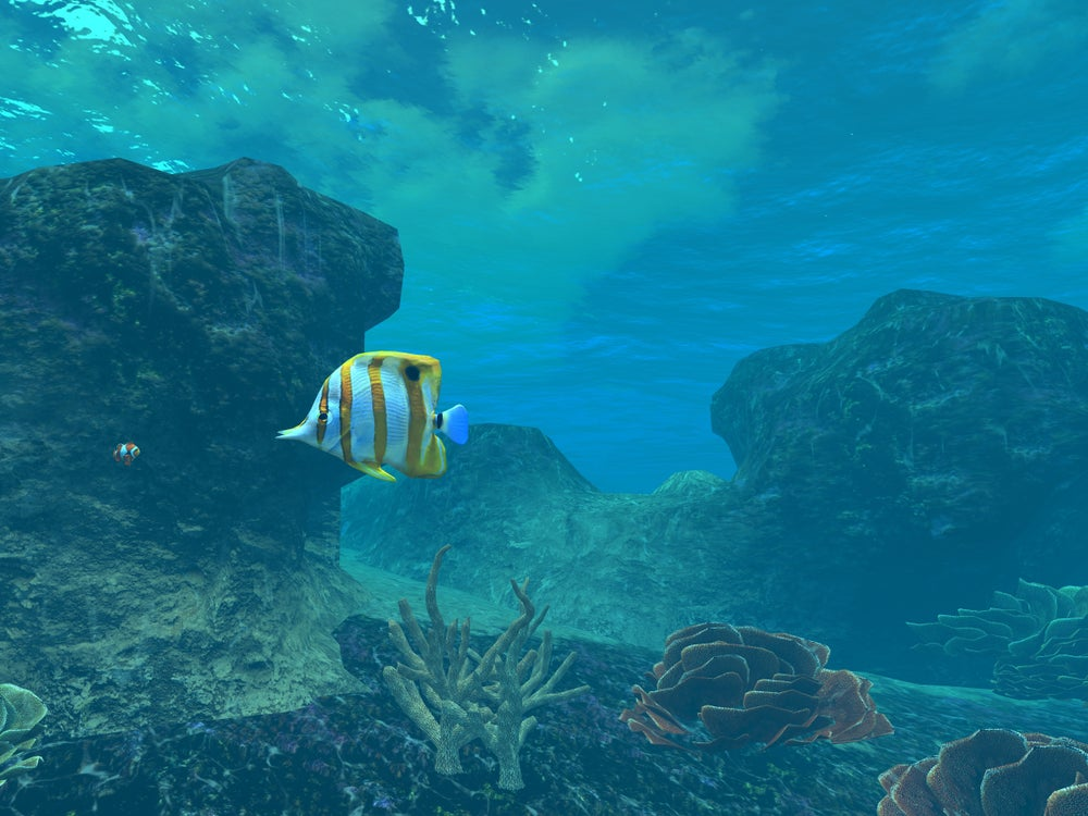 Image of Free Download 3d Model Coral Reef