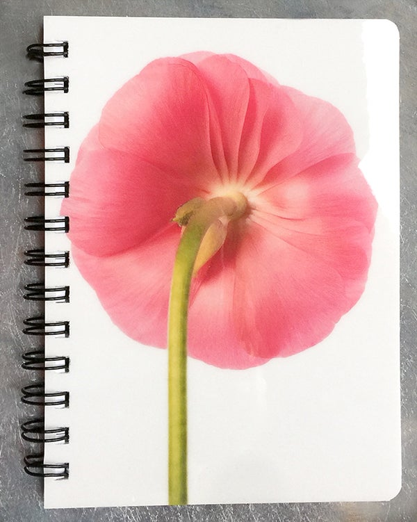 Image of New Notebook
