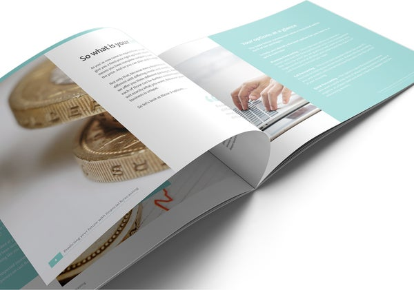 Image of Financial Forecasting Brochure Print