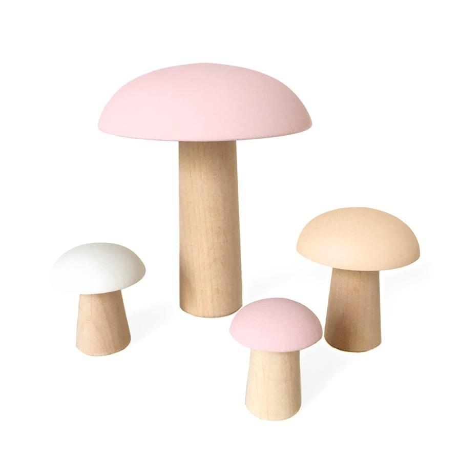 Image of Champignons rose poudré