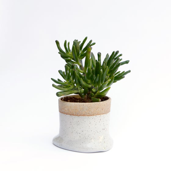 Image of Slouch Planter