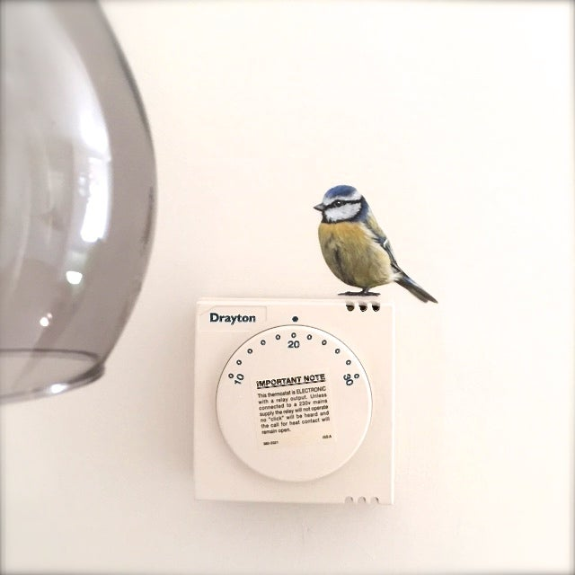 Image of Bertie Blue Tit ~ Wall sticker