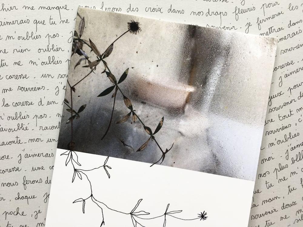 Image of Raconte-moi un souvenir...