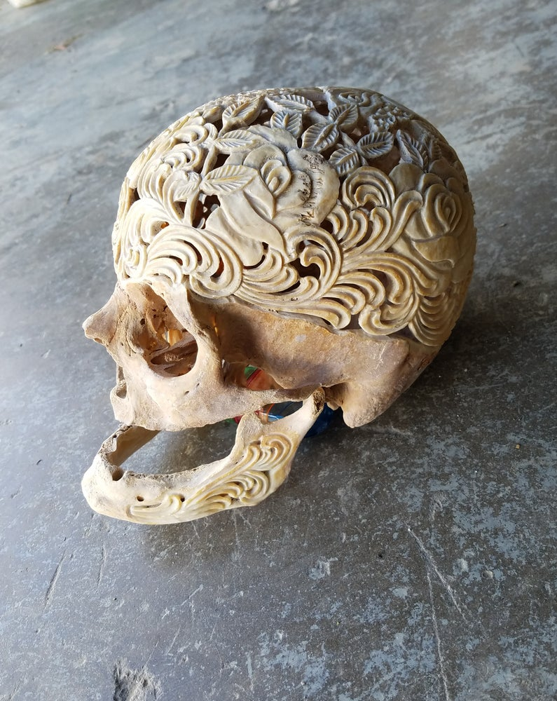 """Image of """"Bed of roses"""" carved geriatric human skull"""