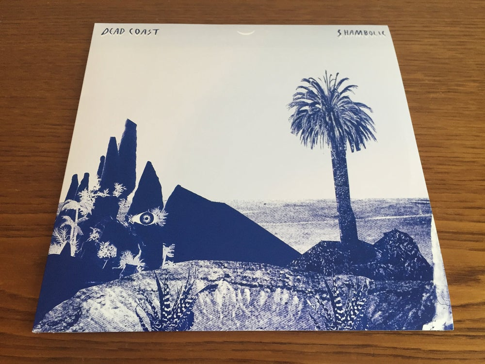 "Image of ""Shambolic"" LP, 1st Press. SOLD OUT!"