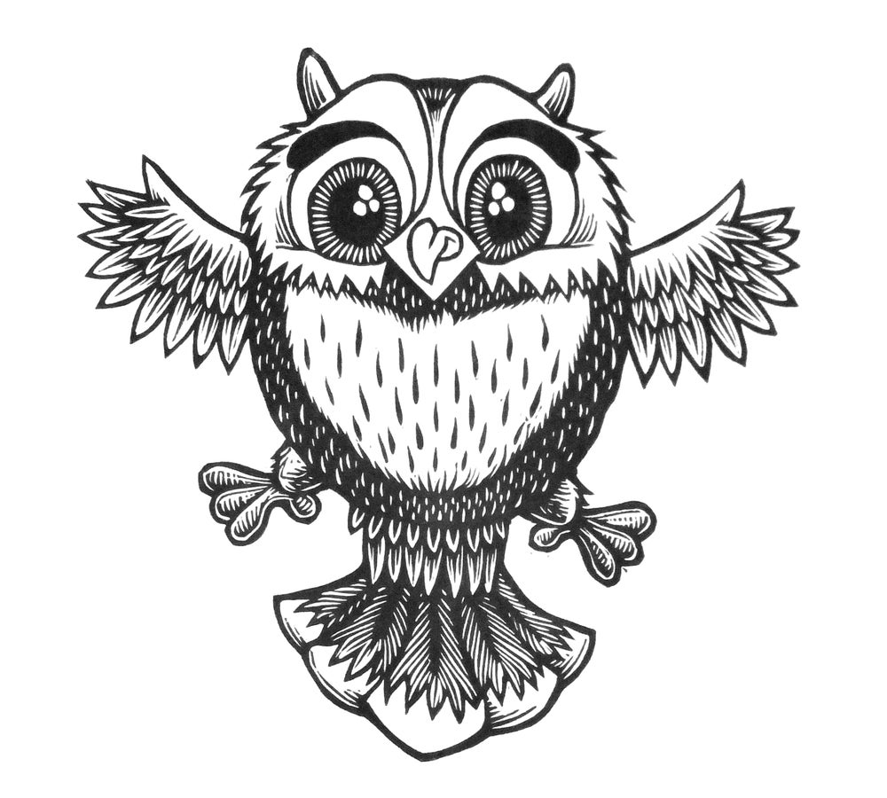 Cute Little Owl T-shirt  (A1)**FREE SHIPPING**