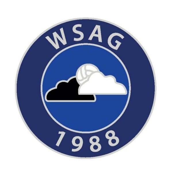 Image of WSAG BOOKS DONATION