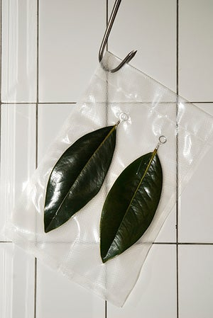 Image of KEEF PALAS III - MAGNOLIA LEAVES