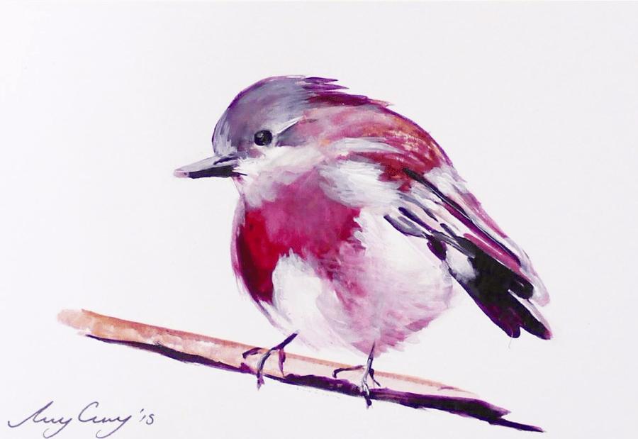 Image of Robin | Print