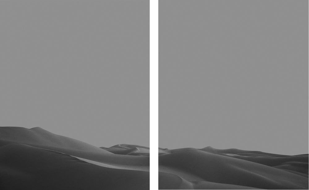 Image of Imperial Dunes III Diptych