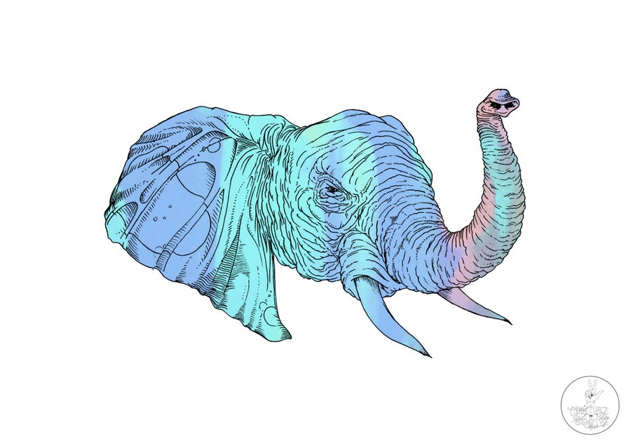 Image of The Psychedelephant