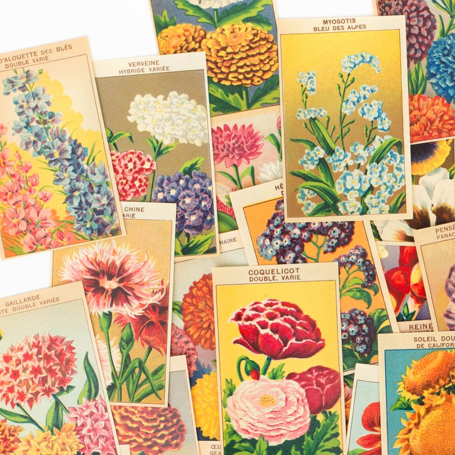 Image of 1920's French Flower Seed Labels