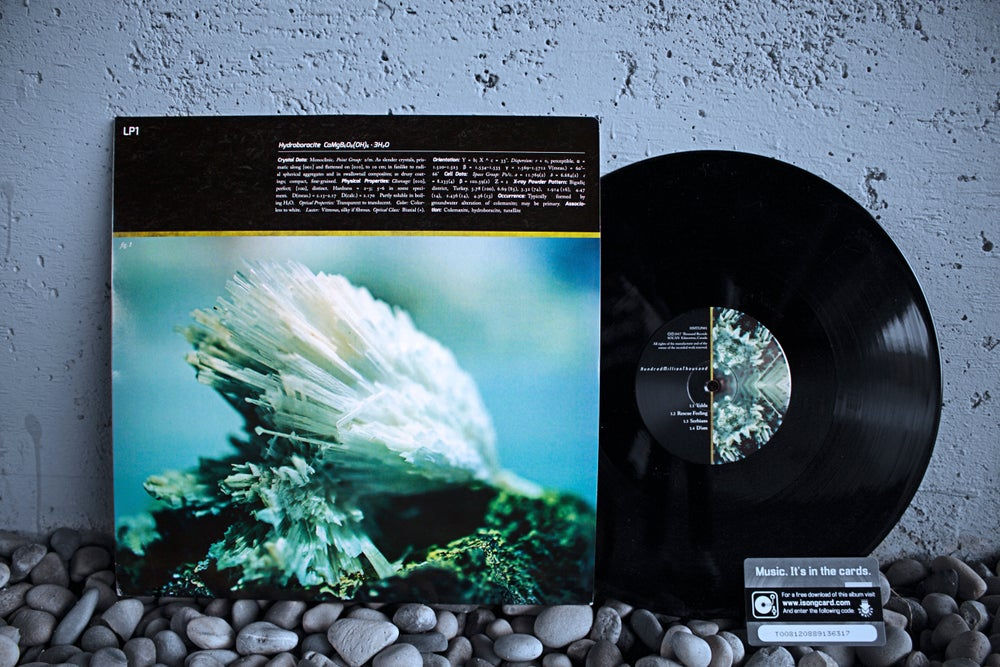 "Image of Limited Edition 12"" Vinyl (180g)"
