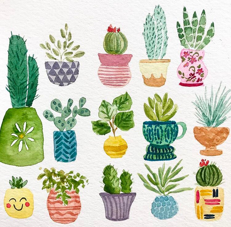 Image of Potted plants