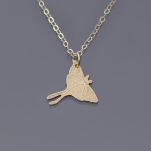 Image of 14k Gold Luna Moth Necklace