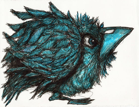 Image of Fat Blue Bird Drawing