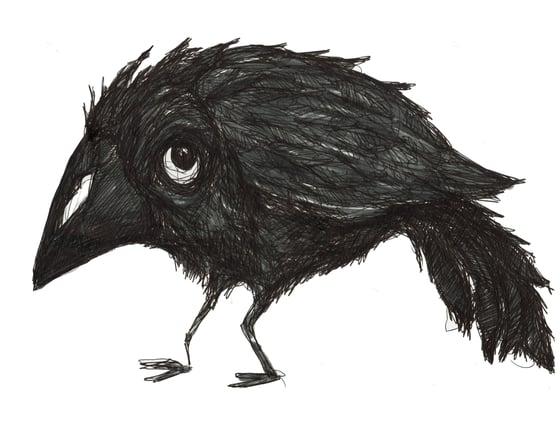 Image of Black Bird Drawing