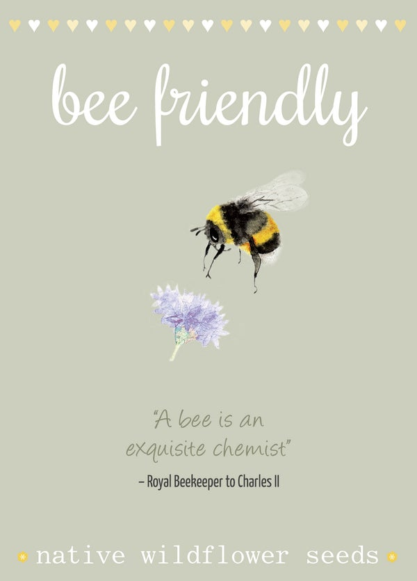 Image of Bee Friendly Seeds with Bee Quote