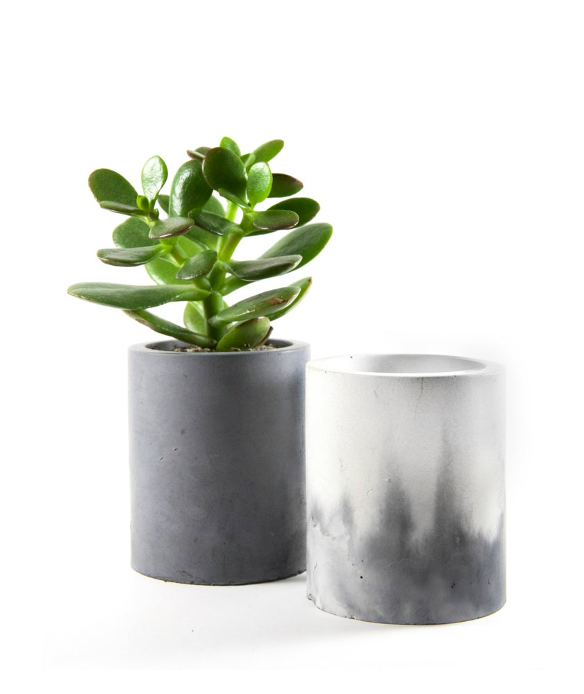 Image of Small Succulent Cement Planter